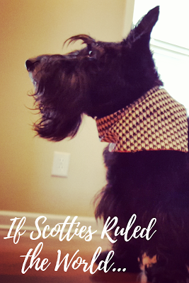 If Scottish Terriers Ruled the World. Read how things would change: http://www.scottiemom.com/2013/08/if-scotties-ruled-world.html