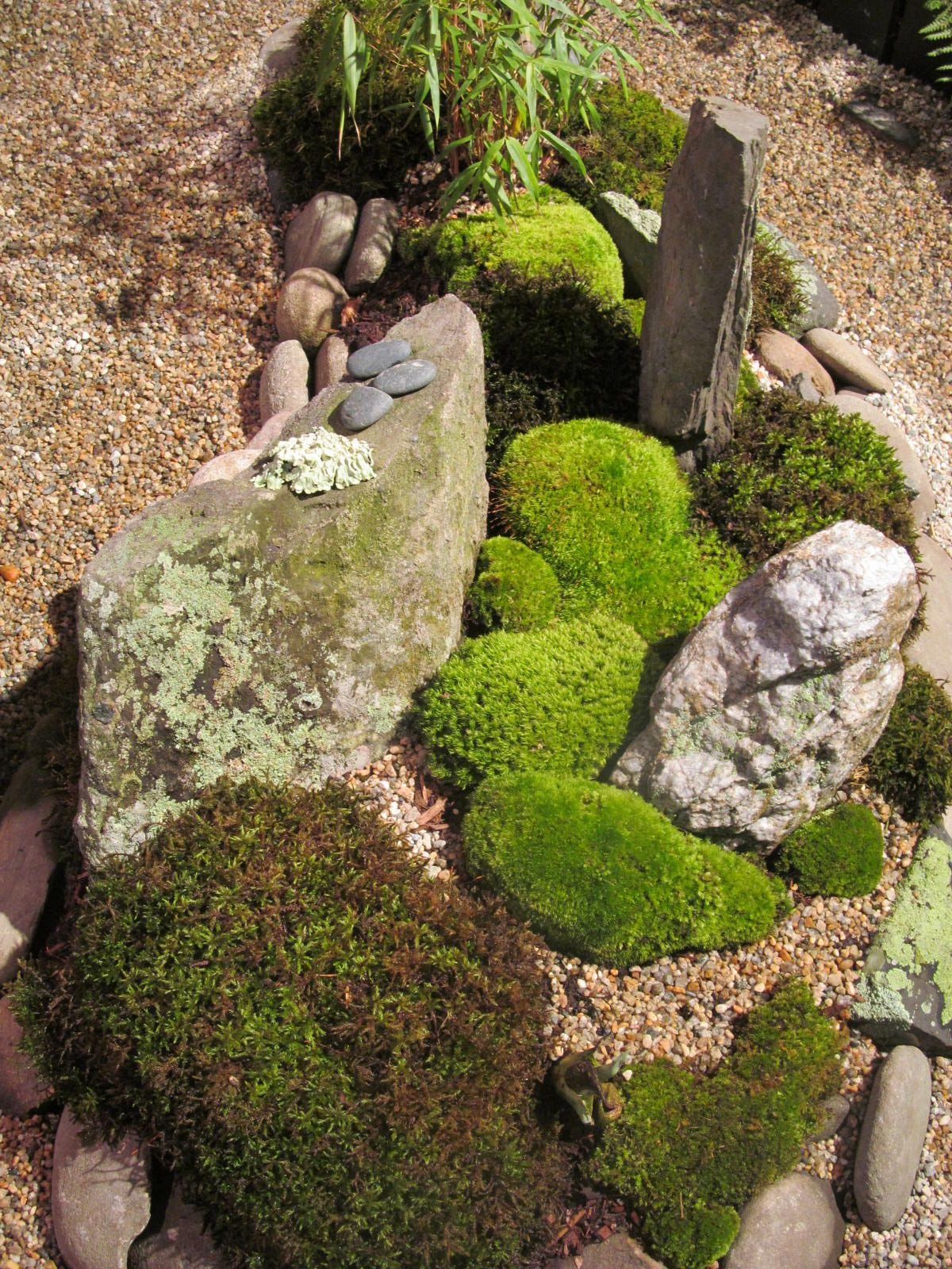 small rock garden with moss picture taken at the 2013 Boston Flower ...
