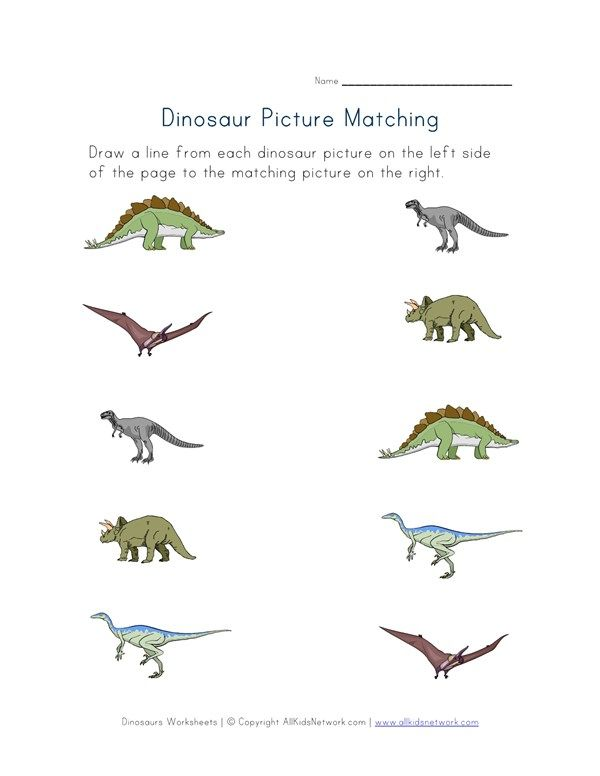 matching dinosaurs worksheet dino ideas dinosaur worksheets matching worksheets dinosaur. Black Bedroom Furniture Sets. Home Design Ideas