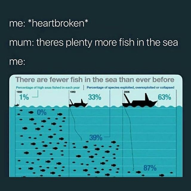 Fish in the sea dating meme