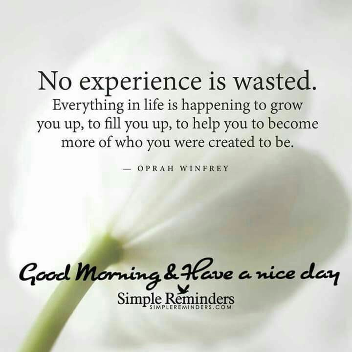 Pin By Raja Kannan On 01 Mq 100 Morning Quotes Good Morning