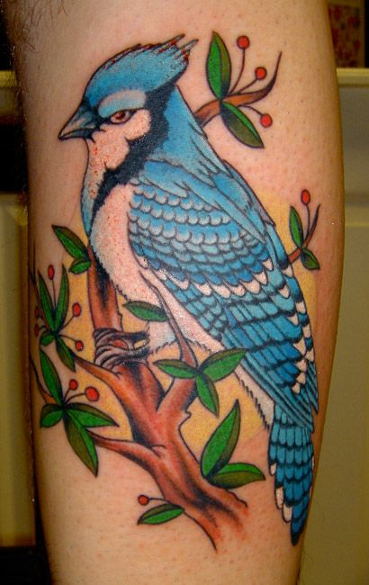 Pin by Tina Joudry on Ink  Blue jay tattoo Tattoos