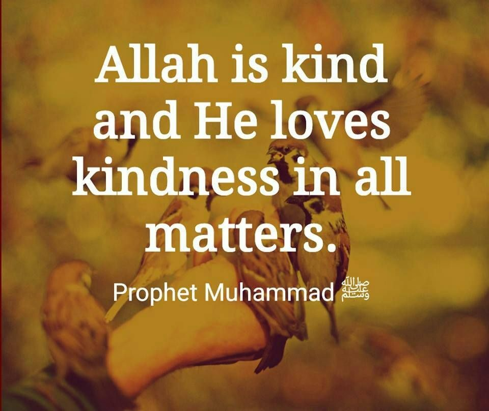50 Best Humanity Quotes In Islam Quran Quotes On Humanity Good Human Being Quotes Humanity Quotes Quran Quotes