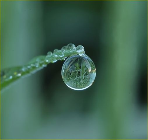 So Amazing Raindrops Keep Falling On My Head Pinterest - Amazing images captured tinniest water droplets
