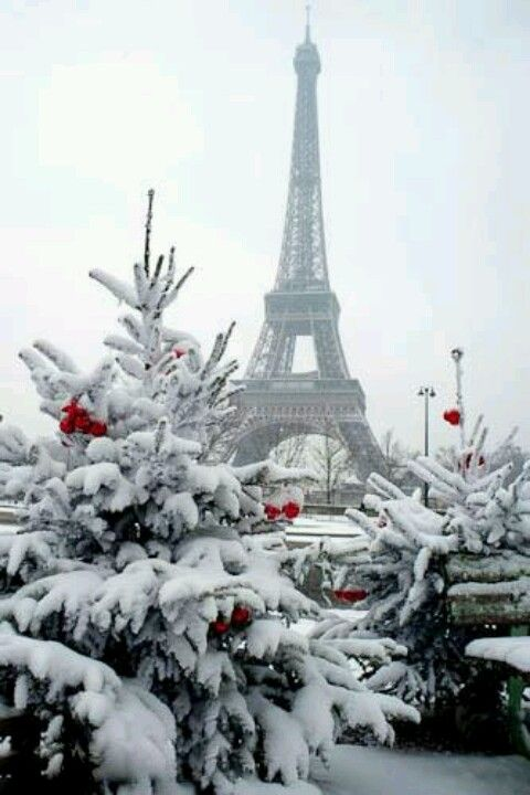 Christmas in Paris. Beautiful