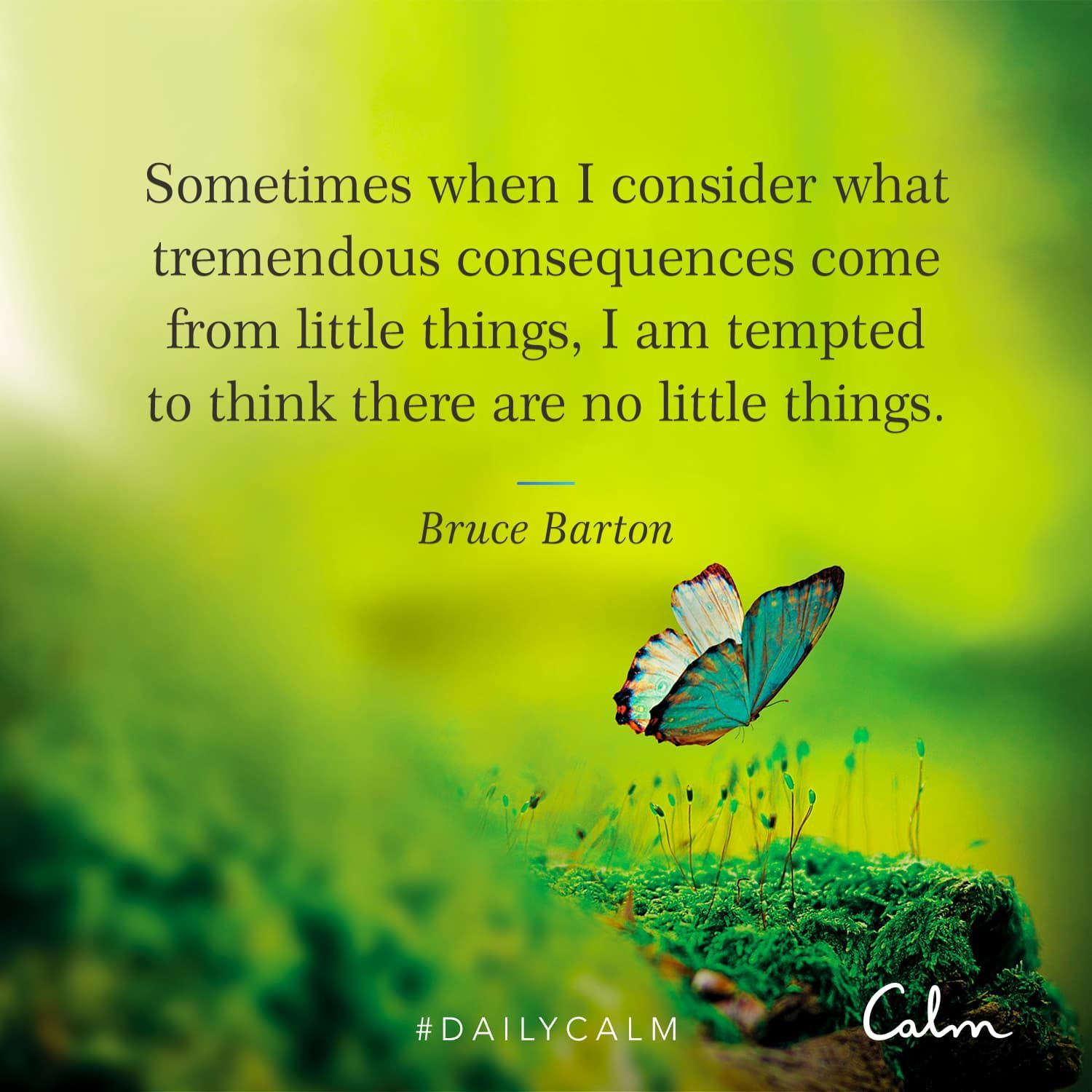 """Daily Calm Quotes """"Sometimes when I consider what"""