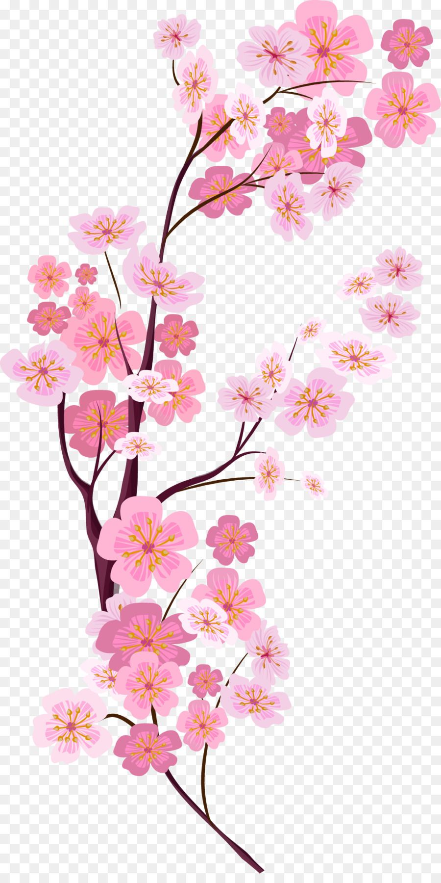Cherry Blossom Euclidean Vector Vector Painted Pink Cherry Blossoms Flower Png Images Pink Floral Background Cherry Blossom Background