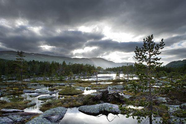 Scandinavian Landscapes Northern Nature Photography Scandinavian Landscape Landscape Photos Landscape Landscape Photography