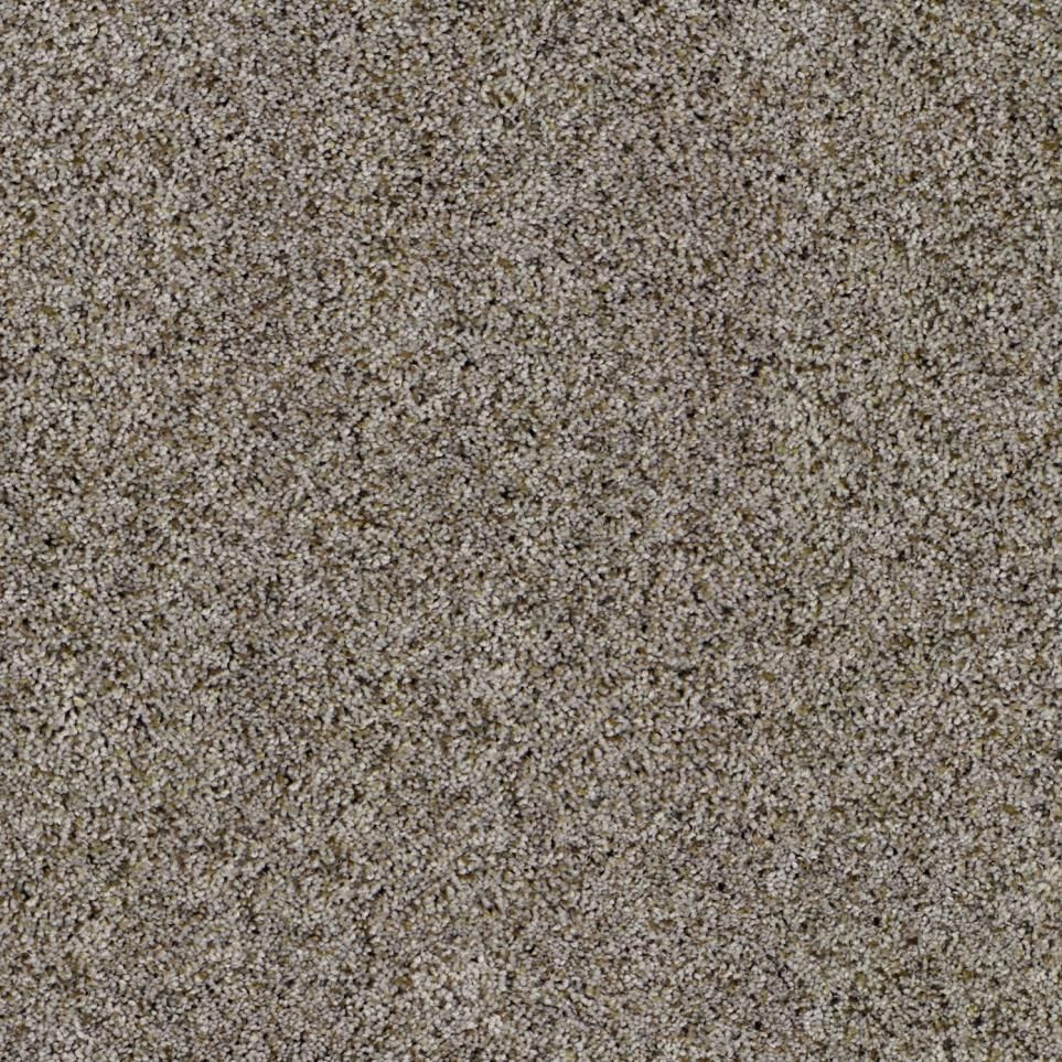 Imagine Plus By Resista Soft Style From Carpet One
