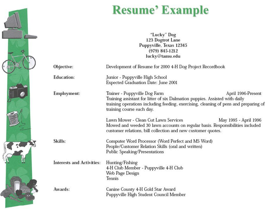 4-H Resume Examples Resume examples, Template and Pdf - high school graduate resume examples