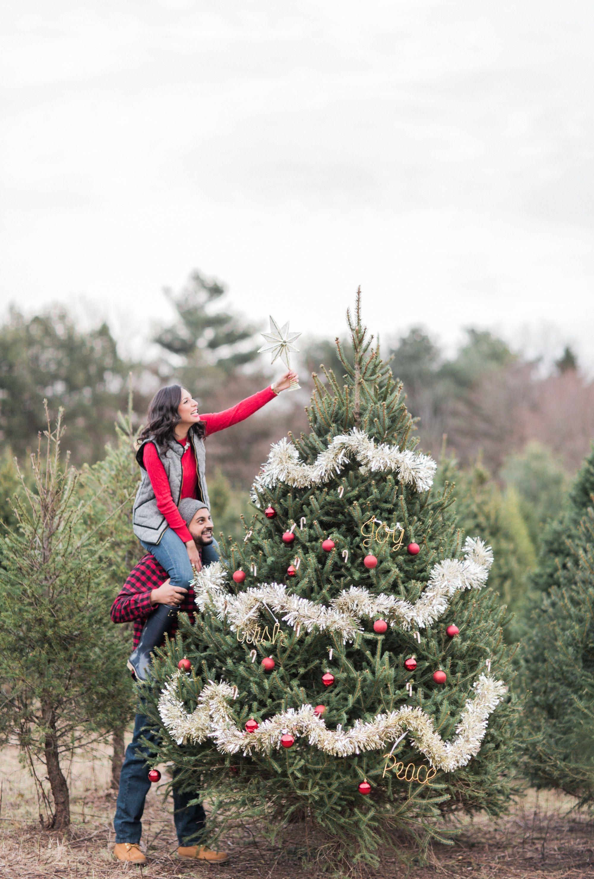 Side Job Became A Career For Christmas Tree Grower Christmas Tree Farm Christmas Tree Lots Tree Farms