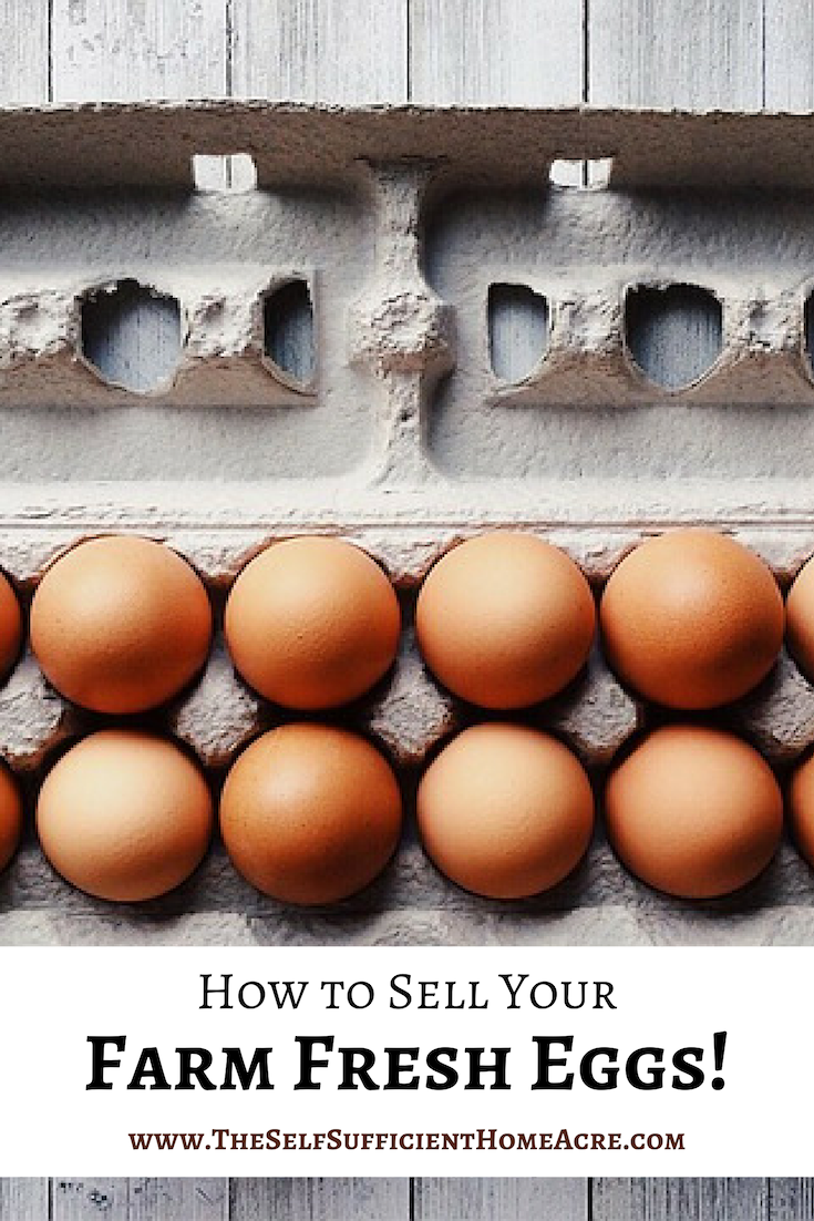 How To Sell Your Farm Fresh Eggs The Self Sufficient Homeacre Farm Fresh Eggs Fresh Eggs Farm Eggs