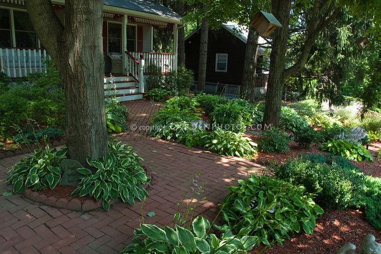 Inspiration For My Shady Front Yard Shade Garden Front Yard