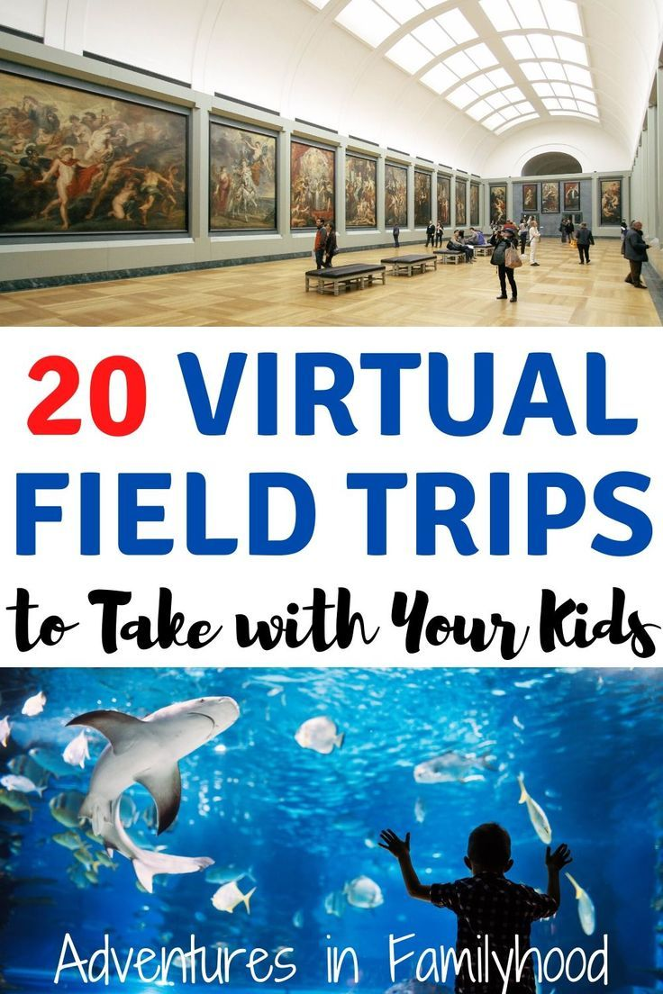 With school out, visit places and travel virtually with these 20 virtual field trips you can take with your kids.