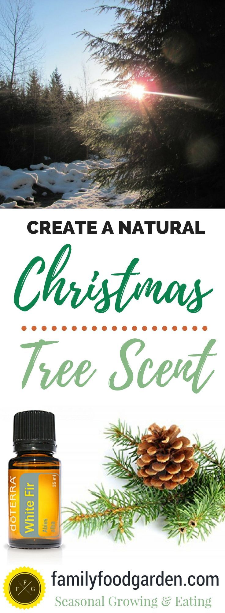 How To Create A Christmas Tree Smell Naturally Christmas Tree Smell Natural Christmas Christmas Tree Scent