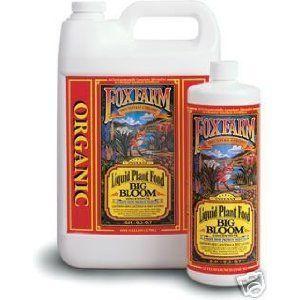 Fox Farm Big Bloom 1 Gallon, 2015 Amazon Top Rated Soils