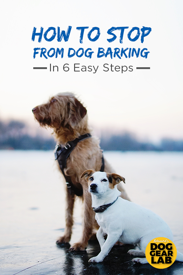 How To Stop Dog Barking In 6 Easy Steps In 2020 Dog Barking Dog Training Dog Training Obedience