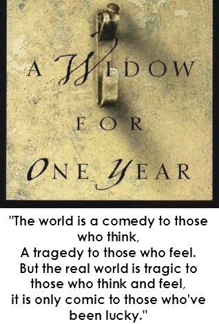 John Irving - A Widow for One Year