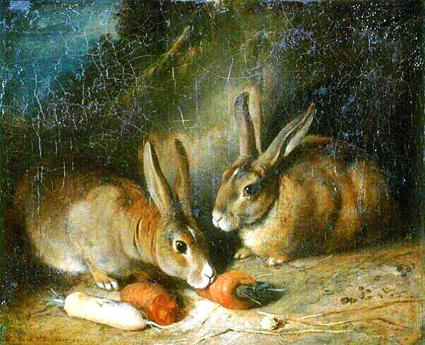 Rabbits eating carrots and turnips; painting.