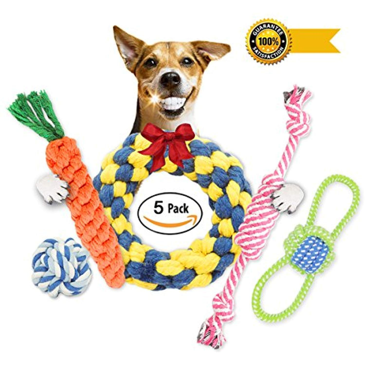 Dechiany Small Dog Puppy Chew Teething Rope Toys Set 5 Pack Gift