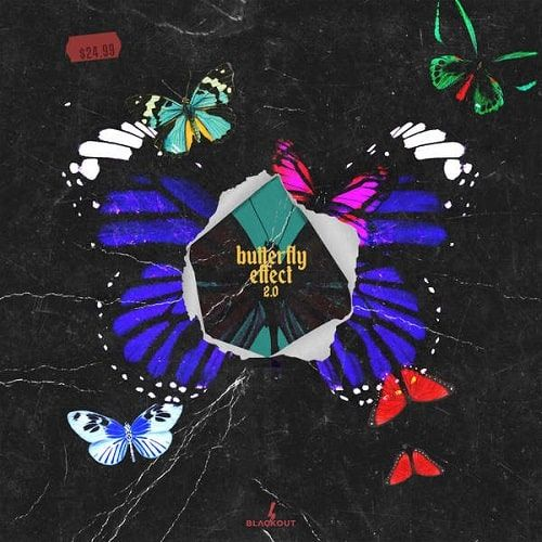Fxrbes Beats Butterfly Effect 2 WAV