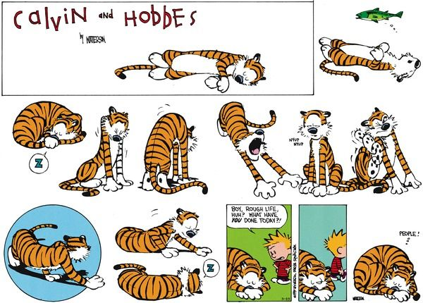 Calvin and Hobbes Comic Strip, May 25, 2014 on GoComics.com