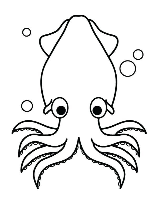 картинка кальмара для вырезания