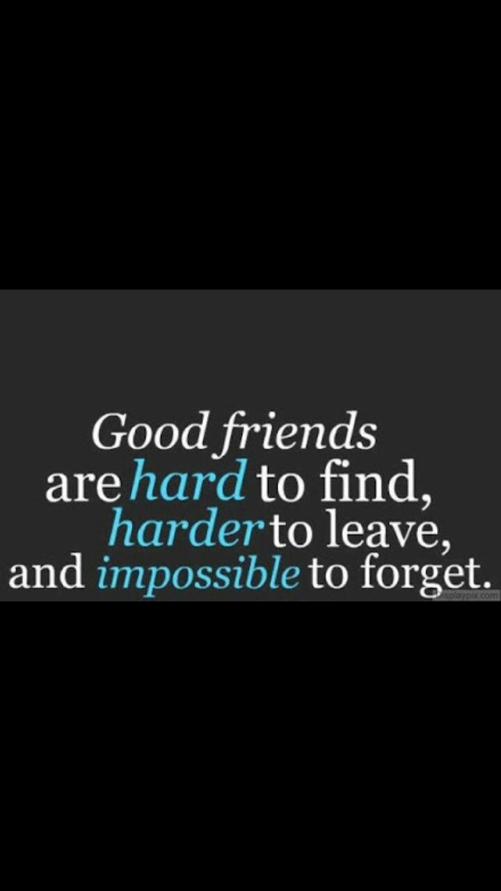 Cool Quotes About Friendship Pinbrianna Dempsey On Cool Quotes  Pinterest  Friendship