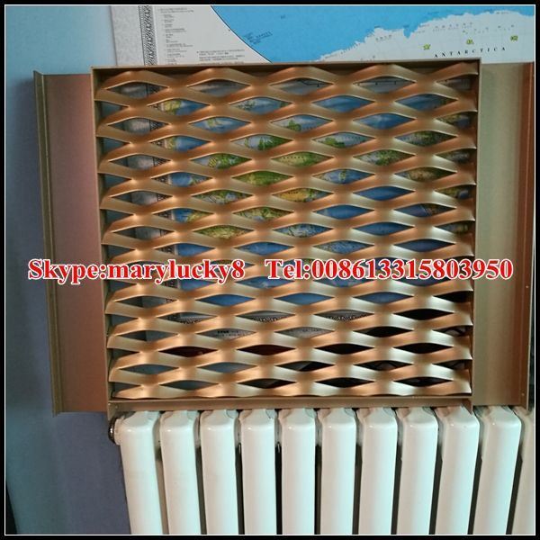 Extrusion Profile Frame Aluminum Expanded Metal wall