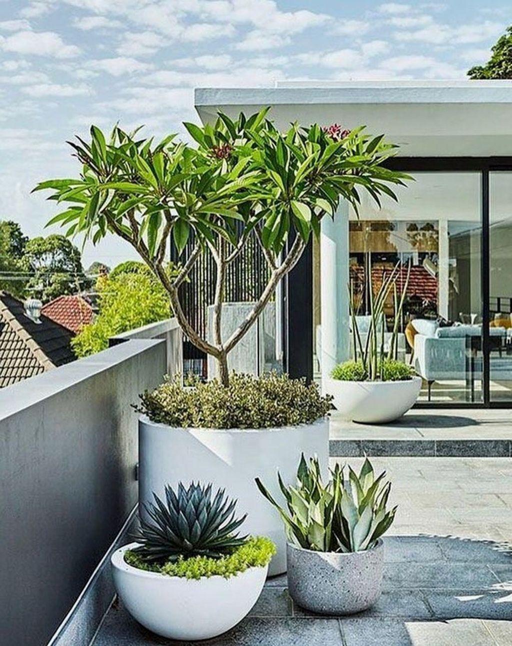 Pin by Lilou Blanchard on interieur | Modern garden design
