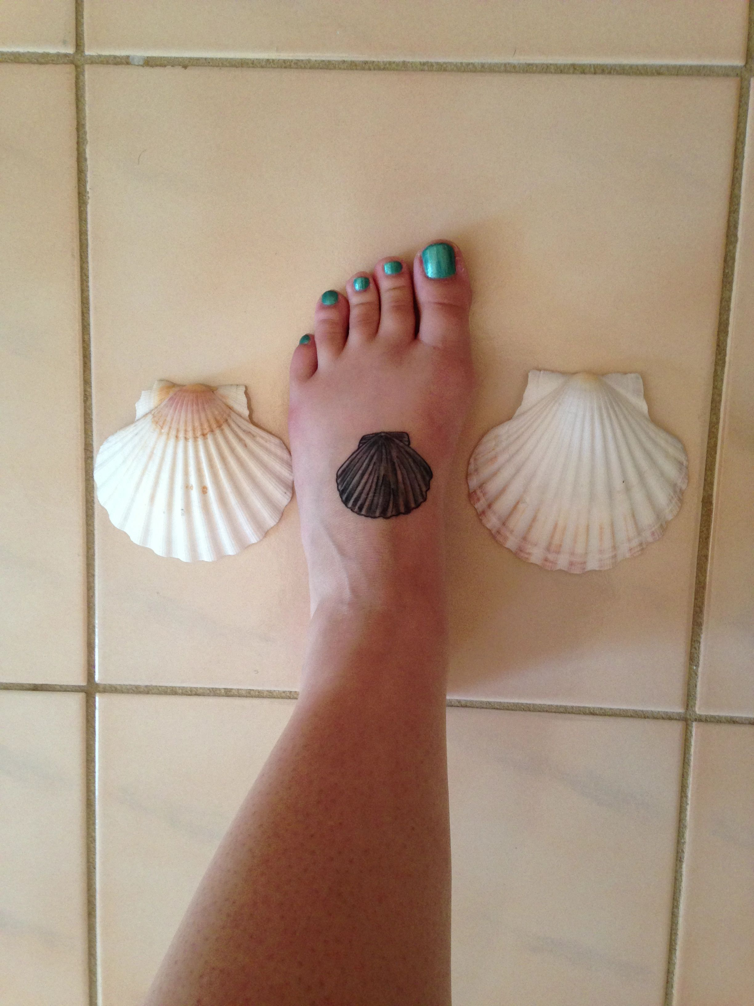 My scallop shell tattoo ink pinterest shell tattoos and tattoo my scallop shell tattoo biocorpaavc Image collections