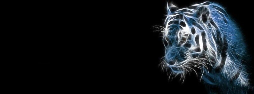 3d Tiger Abstract Best Trendy Cool Cover Photo For Facebook Timeline