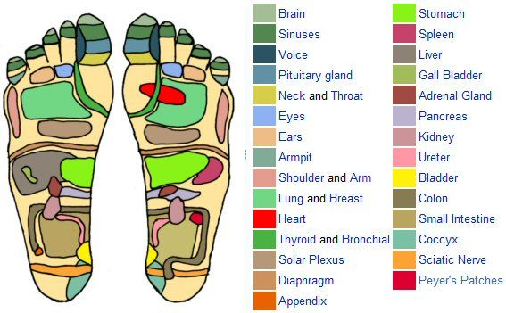 Printable Reflexology Foot Chart Showing Pressure Points Reflexology Foot Chart Foot Reflexology Foot Chart