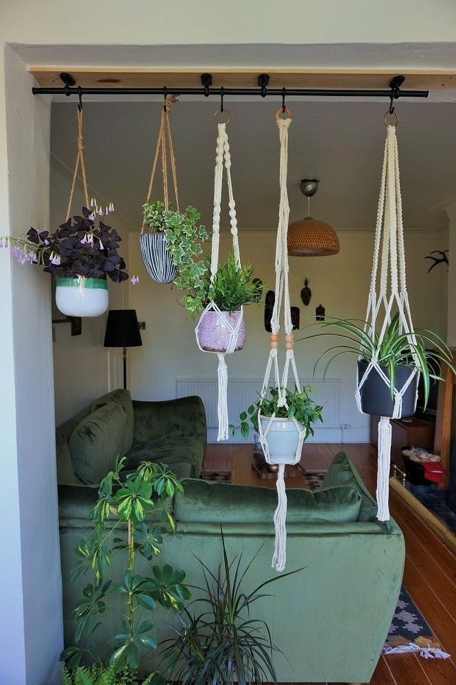 Add These To The Front Of Sunroom Hang Plants From Ceiling House