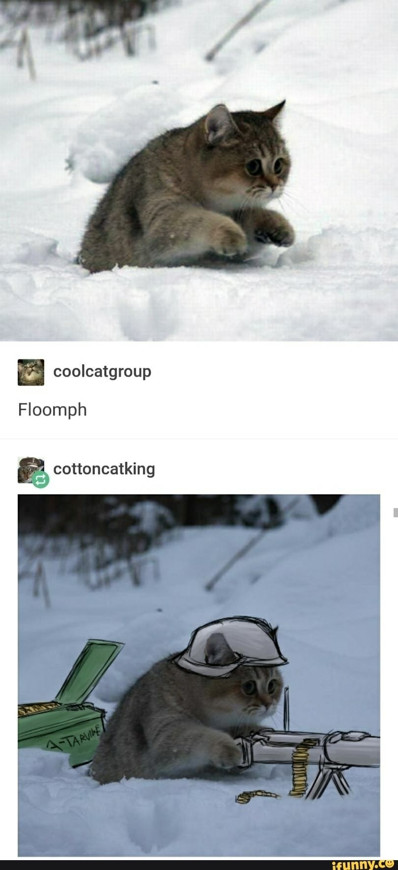 And now he's german Funny animal memes, Funny animals