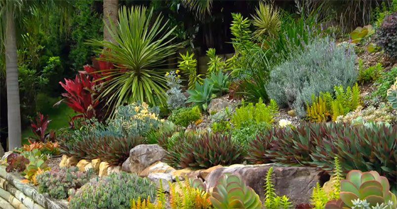 Garden Ideas) Take a Tour of Graham\'s Beautiful Garden | Pinterest ...