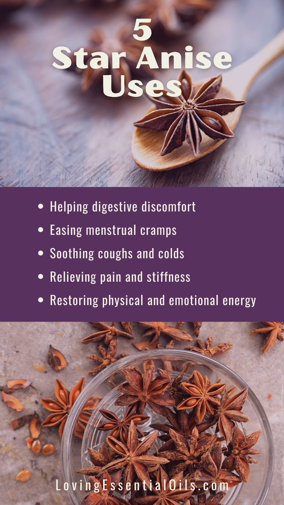 What To Use Instead Of Star Anise