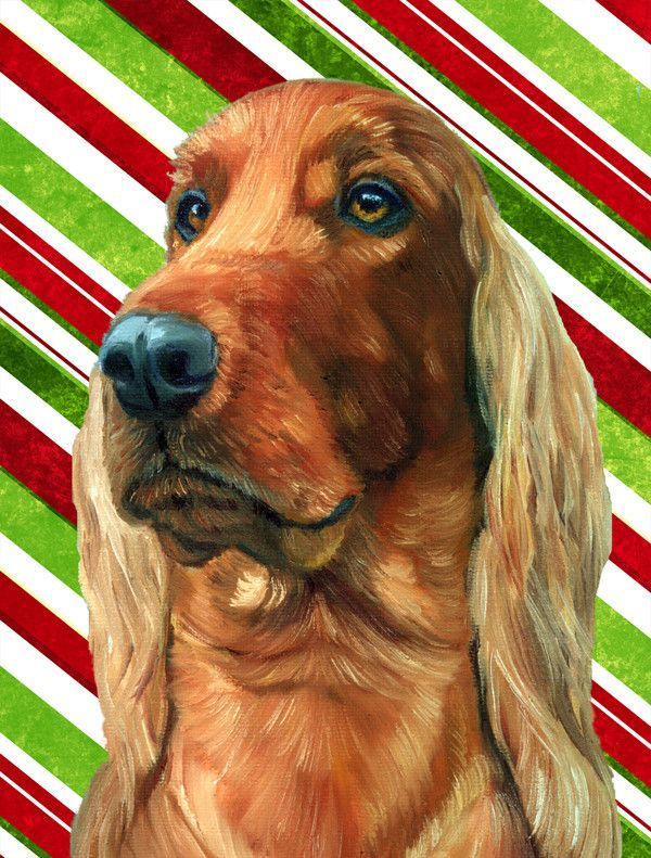 Irish Setter Candy Cane Holiday Christmas Flag Canvas House Size LH9590CHF