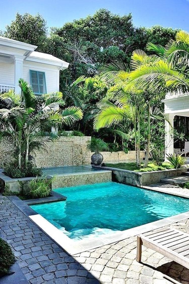 20+ Best Backyard Pool Ideas | Small backyard pools ...
