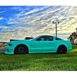 representing royal purple ladies nikki frosts tiffany blue wrapped 2013 mustang gt garcia - Mustang 2014 Purple
