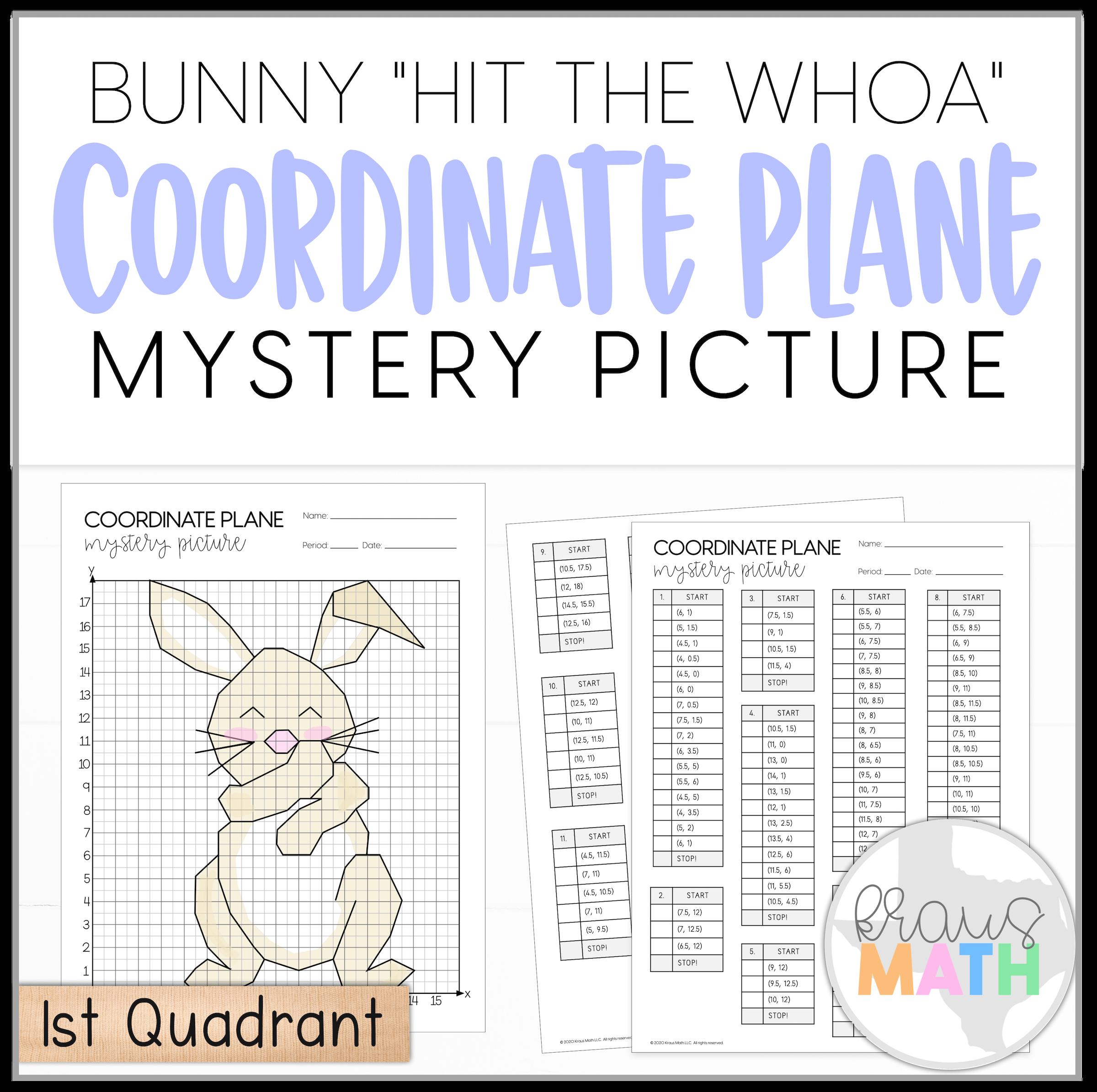 Bunny Hit The Woah Dance Coordinate Plane Mystery