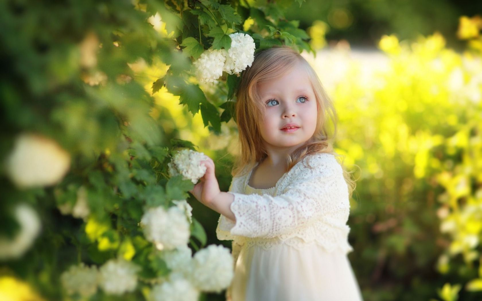 cute pictures of little girls - : yahoo image search results | cute