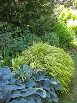 Schattenbeet, dicht gefüllt mit Hosta und Gräsern Gartenplaner - garten und landschaftsbau bilder