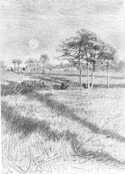 Pin By Dinah Jones On R E F E R E N C E Landscape Nature Drawing Drawings