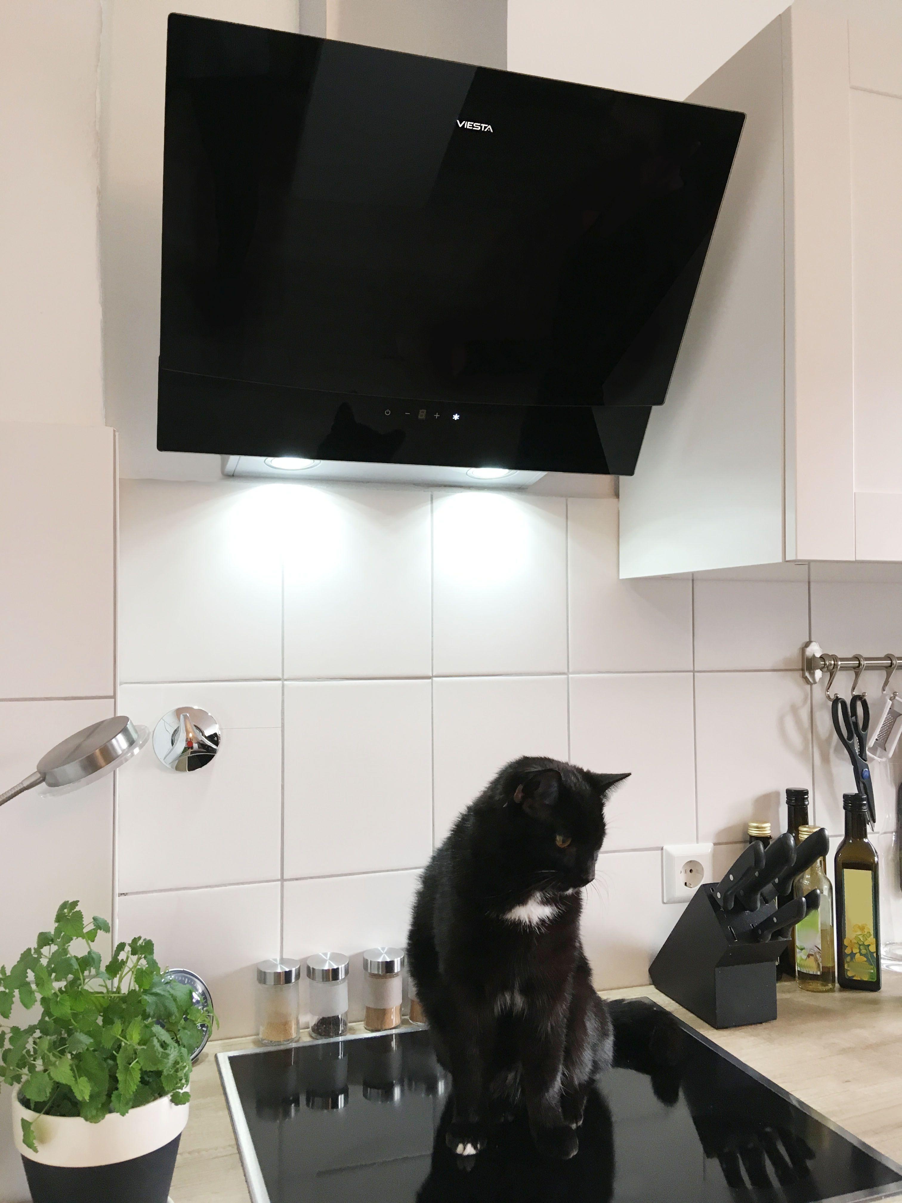 Fantastisch Küchenabzugshaube Außenabdeckung Zeitgenössisch - Küchen ...