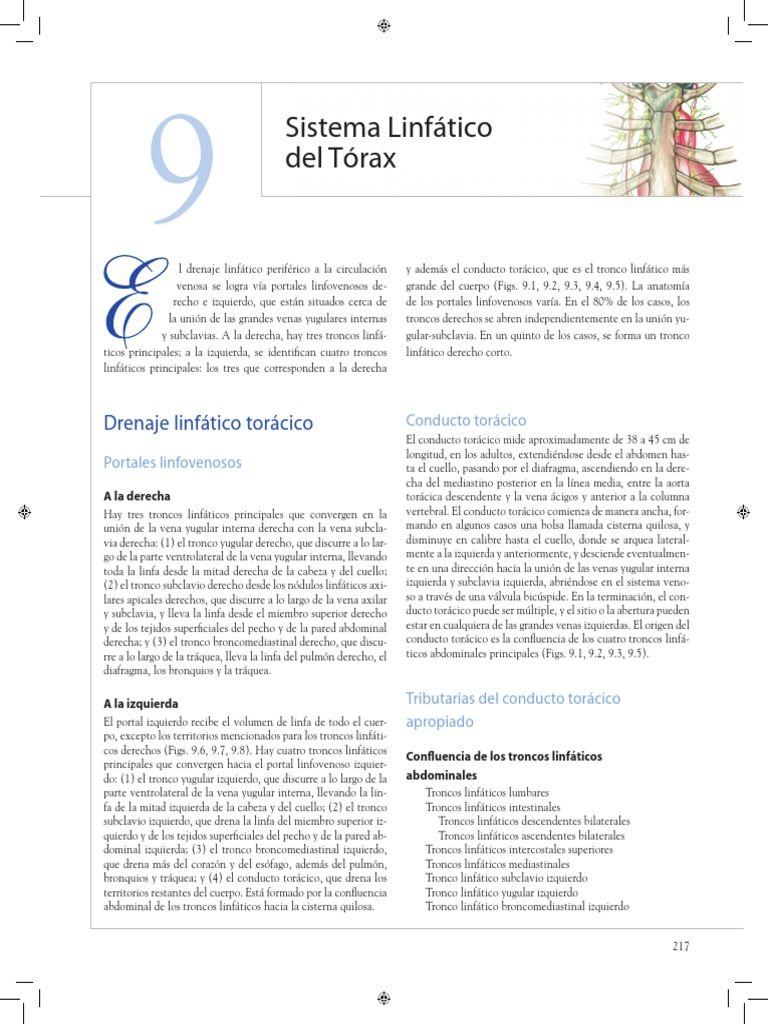 Sistema linfático de tórax, conducto torácico, nódulos linfoides ...