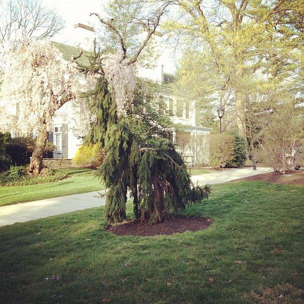 Philadelphia University Tuttleman Center Philadelphia