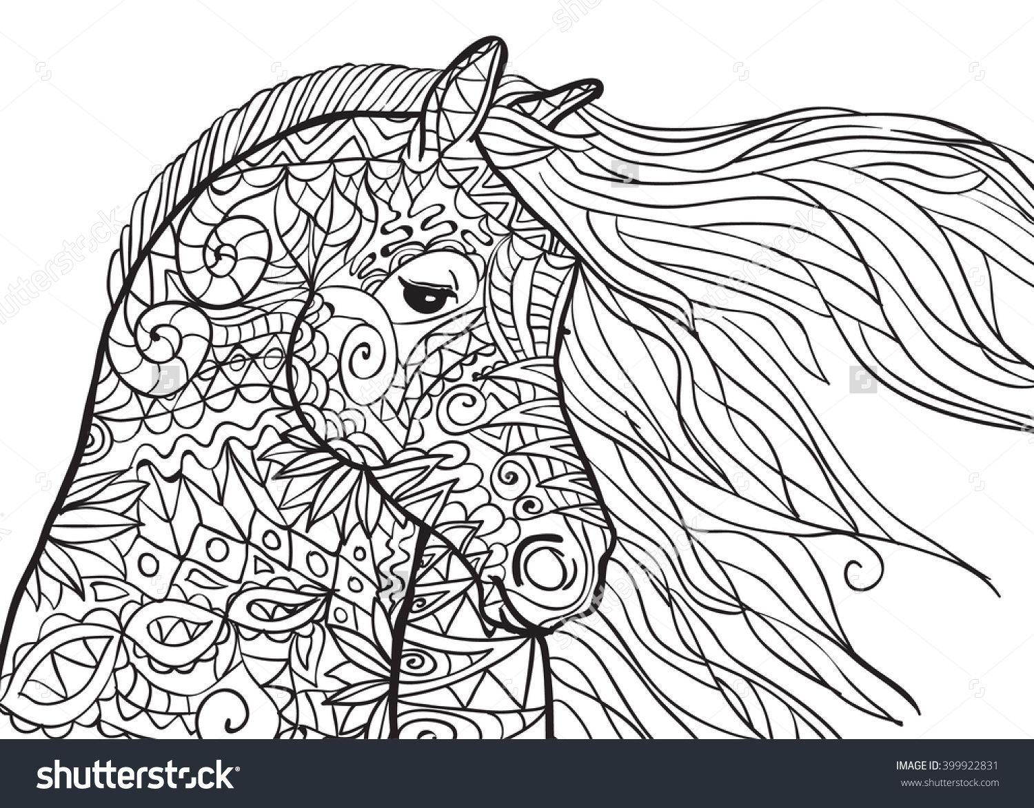 Hand Drawn Coloring Pages With Horse's Head, Illustration