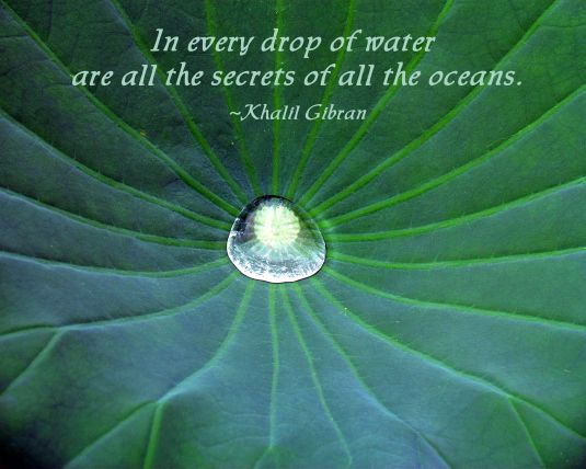 Beauty Break 127 Nature Quotes Nature Quotes Quotes Water
