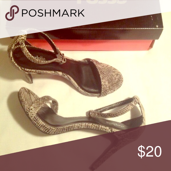 Charlotte Russe snake skin Heels Size: 8 Cute/ Sophisticated Charlotte Russe Snake Skin Heels! Size:8 Charlotte Russe Shoes Heels